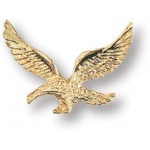 14k Gold Plated American Eagle Pin